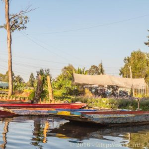 Xochimilco is an agricultural area