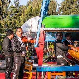 Mariachis are like Pirates here, boarding ships attacking you with bad music and taking your money